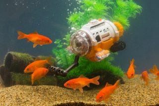 水槽の中で魚を撮影!カメラ付潜水艦ラジコン「サブマリナーカメラ」
